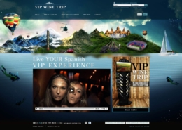 Development of the commercial website WIP WINE TRIP