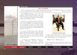 Development of corporate website of Brokerage JULIO VOSSELER